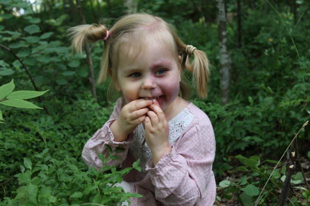 Piilossa on hyvä syödä mustikoita