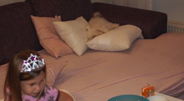 Nuuskulla on kyllä melkoisia nukkumapaikkoja