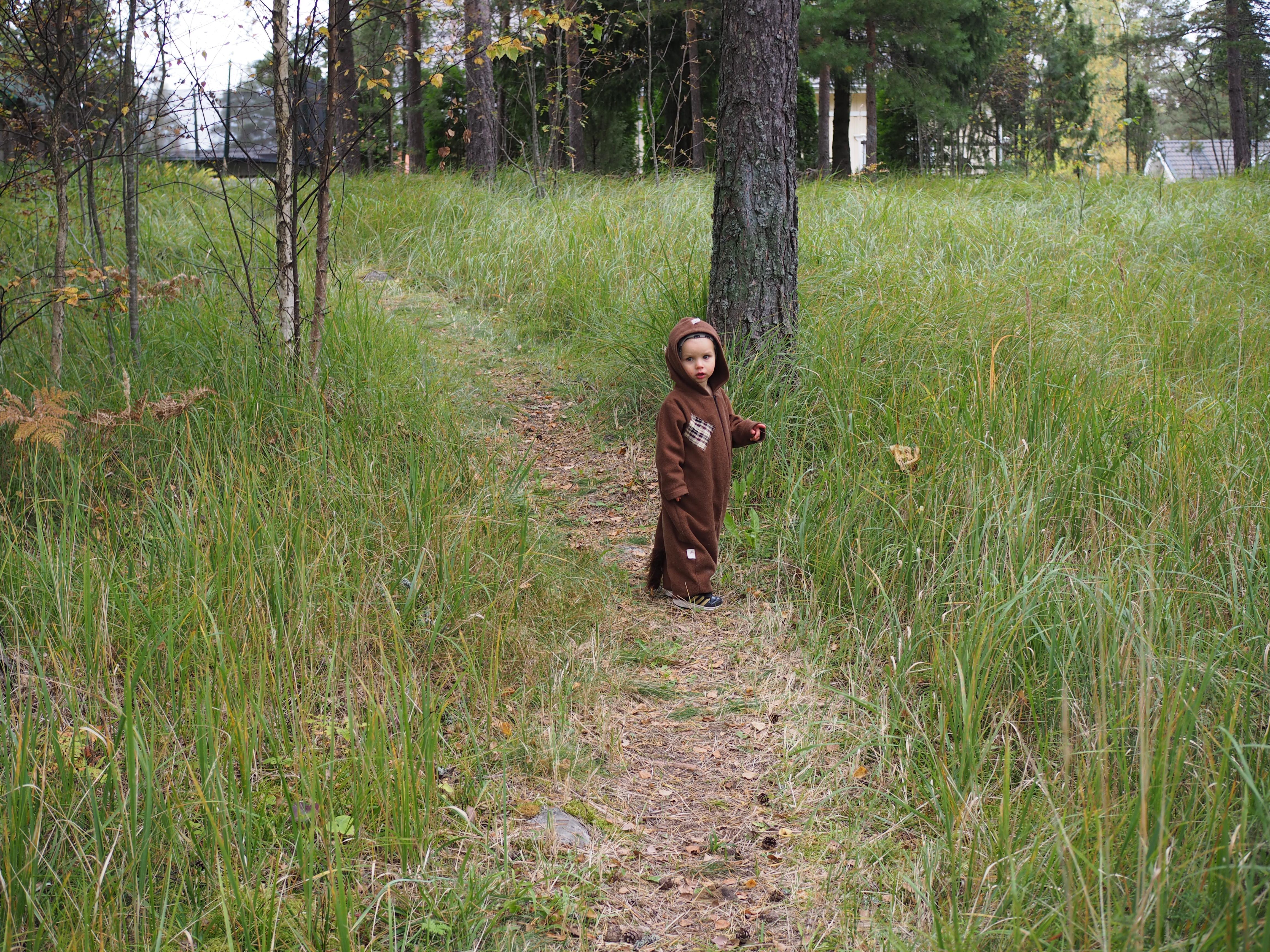 Metsässä